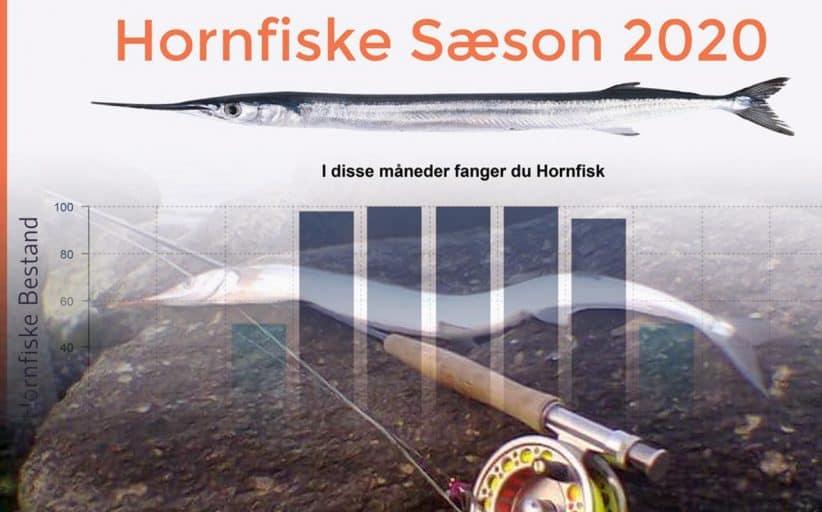 Hornfisk Information