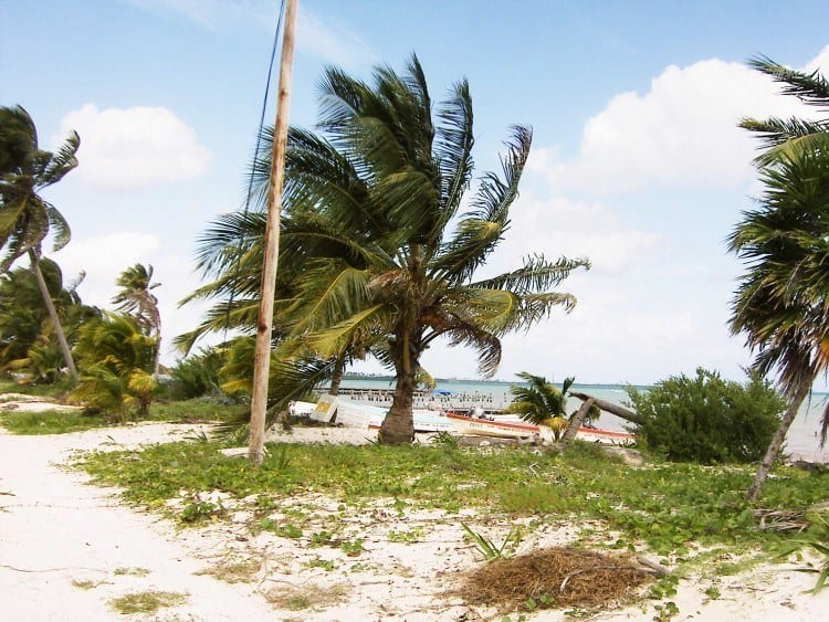 På de caribiske kyst blæser vinden som den altid har gjort, og man kunne sagtens forestille sig, at alle mennesker forsvandt ...