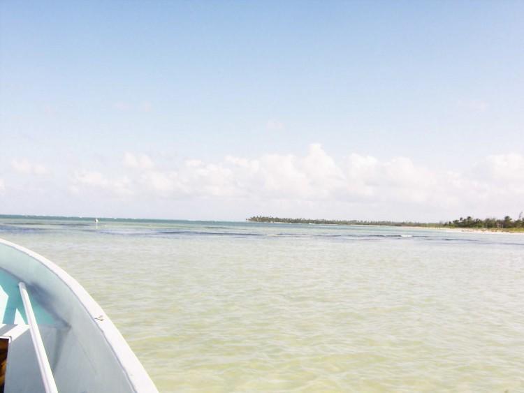 Ude på The Flats: 27 grader varmt, knædybt vand med hajer, rokker og bonefish
