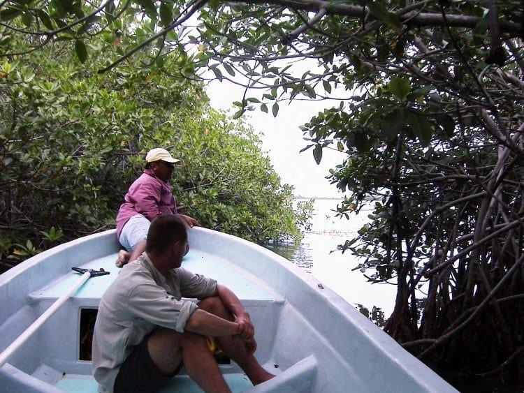 På vej ud i frit vand efter nogle timers roden rundt i mangroven